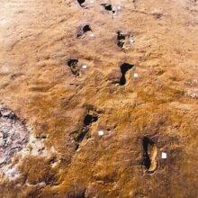 Следам из прошлого Земли, 100 миллионов лет.
