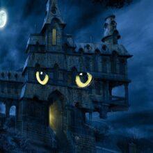 Призрак или домовой.