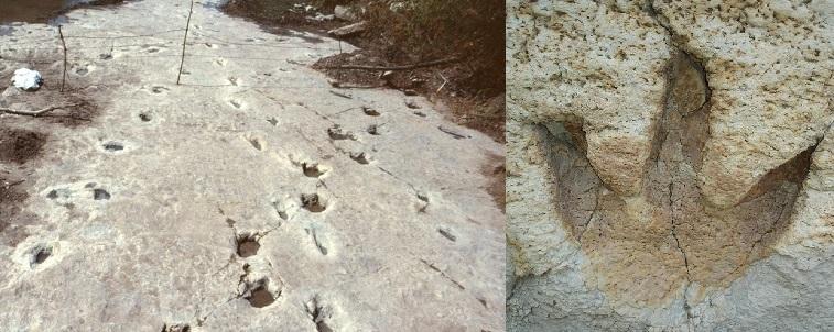 Следам из прошлого Земли, 100 миллионов лет