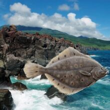 Ловля камбалы с берега на Курильских островах.