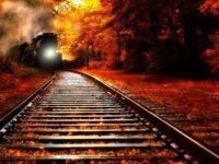 Встреча с экстрасенсом в купе поезда