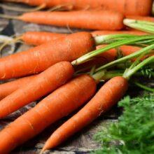 Посадка моркови. Новый способ прореживания