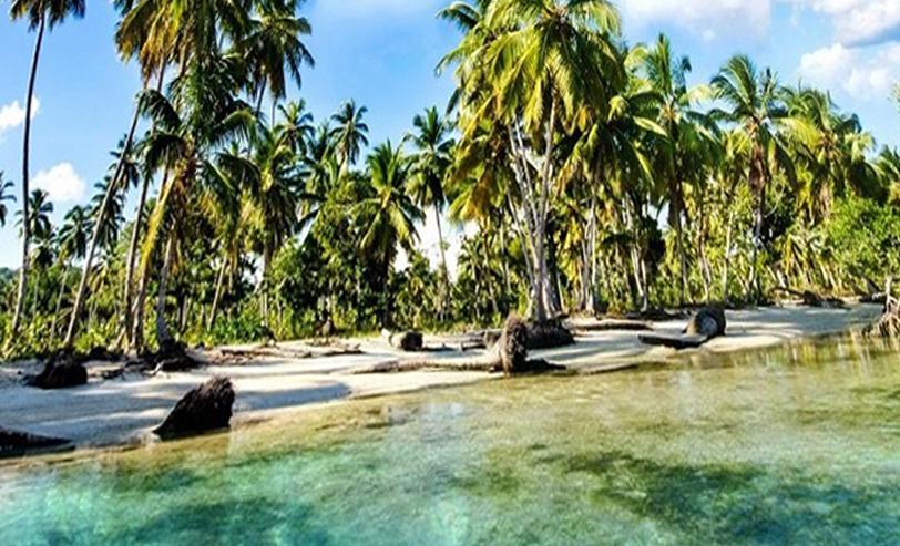 Бали. Путешествия. Погода. Петушиные бои