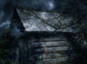 Мистическое свечение и гроза, напугало собаку, и она вскрыла дверь в сарай