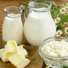 Отношение молочнокислых бактерий к внешним воздействиям