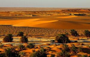 Куда исчезло озеро Чад?