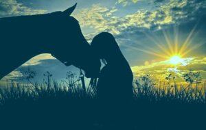 Почему люди держат домашних животных