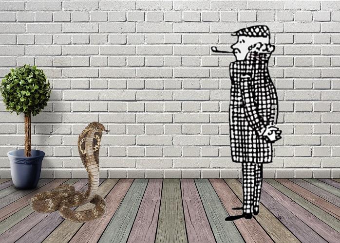 Загадка укус змеи