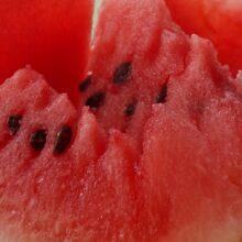 Арбуз, как выбрать спелый арбуз и полезные свойства арбуза