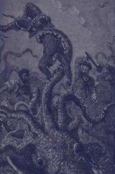 Гигантские кальмары и истории неожиданных встреч