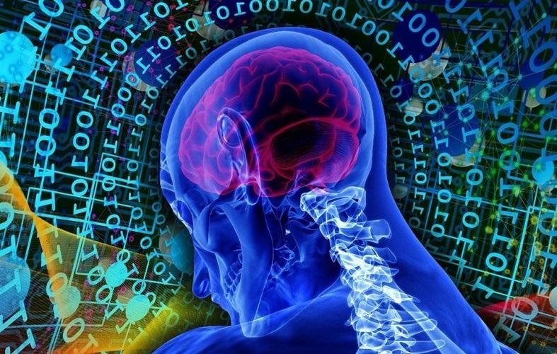 Мозг. Мысль. Причины лени
