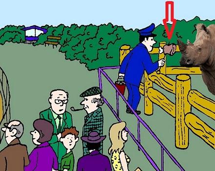 Загадка в зоопарке