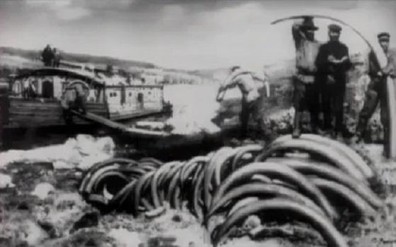 Загадка пропавших мамонтов