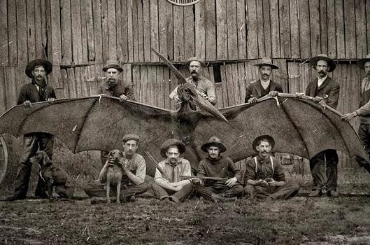 Птеродактили в Техасе и легенды встреч