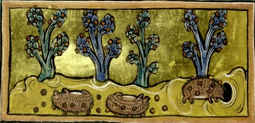 картина художника XIII века (Британский музей)