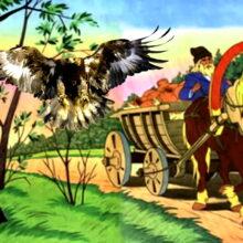 Андямо и орел сказка