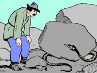 Неблагодарная змея и Арап – сказка