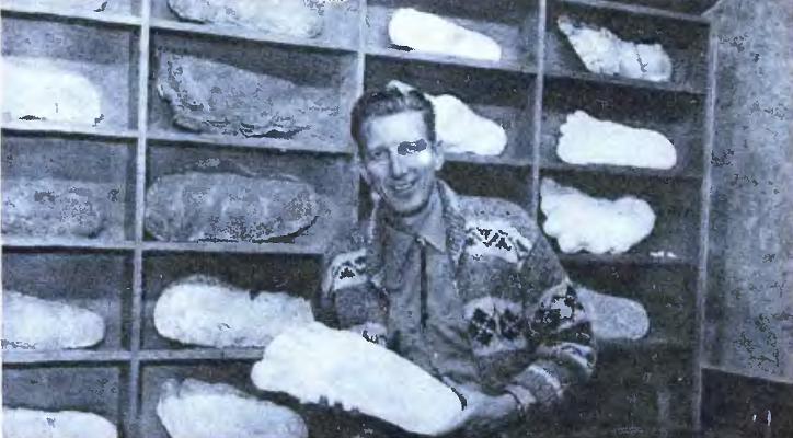 Снежный человек и Бигфут или новые свидетельства о лесном человеке